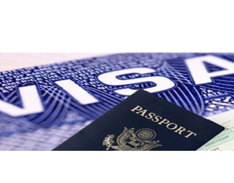 Comprehensive Guide To Know Financial Requirements For Visitor Visa 600